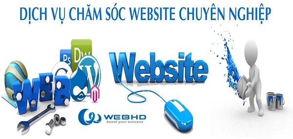 Chăm sóc web chuyên nghiệp