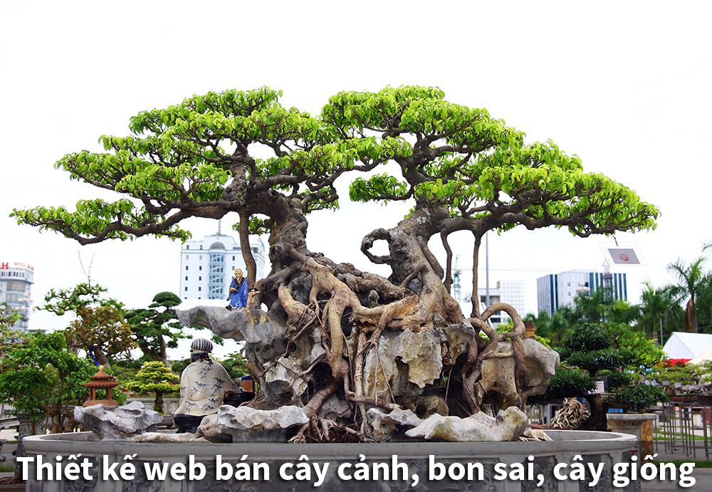 Thiết kế web bán cây cảnh, bon sai